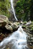 Cachoeira na floresta Fotografia de Stock