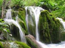 Cachoeira na floresta - Croatia imagem de stock royalty free