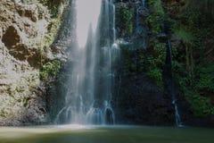 Cachoeira na floresta de Ngare Ndare, Kenya Fotografia de Stock