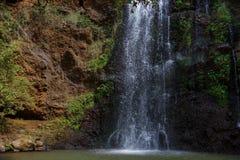 Cachoeira na floresta de Ngare Ndare, Kenya Fotografia de Stock Royalty Free