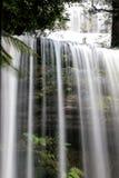 Cachoeira na floresta de Tasmânia Fotos de Stock