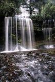 Cachoeira na floresta de Tasmânia Foto de Stock
