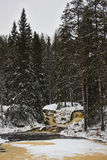 Cachoeira na floresta do inverno Fotografia de Stock