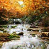 Cachoeira na floresta do outono fotografia de stock royalty free