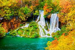 Cachoeira na floresta do outono imagem de stock