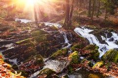 Cachoeira na floresta enevoada do outono Fotografia de Stock Royalty Free