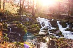 Cachoeira na floresta enevoada do outono Imagem de Stock