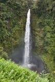 Cachoeira na floresta húmida Fotos de Stock