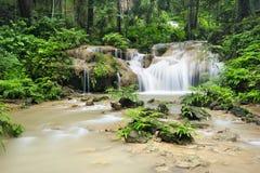 Cachoeira na floresta profunda Foto de Stock