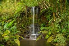 Cachoeira na floresta tropical de Tailândia Imagens de Stock Royalty Free