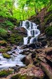 Cachoeira na floresta verde Imagens de Stock Royalty Free