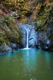 Cachoeira na garganta Fotos de Stock Royalty Free