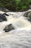 Cachoeira na madeira Fotos de Stock