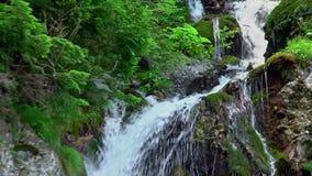 cachoeira na montanha filme