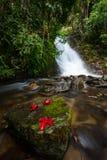 Cachoeira na montanha de Inthanon Imagem de Stock Royalty Free