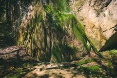 Cachoeira na paisagem das montanhas rochosas Fotos de Stock Royalty Free
