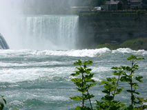 Cachoeira na queda Foto de Stock