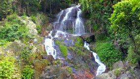 Cachoeira na selva video estoque
