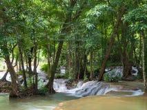 Cachoeira na selva Fotos de Stock