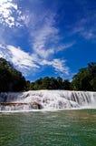 Cachoeira na selva Imagens de Stock Royalty Free