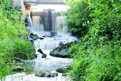 Cachoeira nas folhas verdes Fotografia de Stock