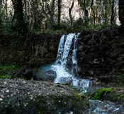 Cachoeira nas madeiras foto de stock