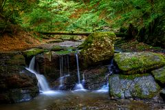 Cachoeira nas madeiras Imagens de Stock