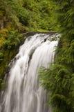 Cachoeira nas madeiras Imagens de Stock Royalty Free