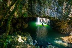 A cachoeira natural da ponte no parque nacional de Springbrook em Aus Fotos de Stock Royalty Free