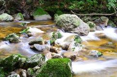 Cachoeira no cr Imagem de Stock Royalty Free
