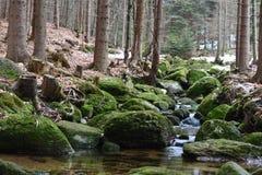 Cachoeira no cr Imagens de Stock Royalty Free