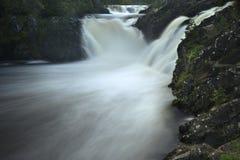 Cachoeira no córrego da floresta Fotos de Stock Royalty Free
