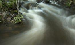 Cachoeira no córrego da floresta Imagem de Stock