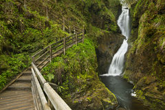 Cachoeira no Glenariff Forest Park em Irlanda do Norte Imagem de Stock