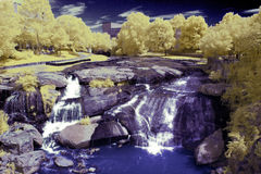 Cachoeira no infravermelho Foto de Stock