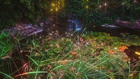 Cachoeira no jardim bonito video estoque