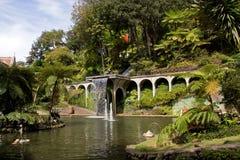 Cachoeira no jardim tropical Fotos de Stock Royalty Free
