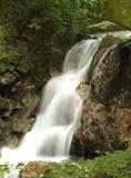 Cachoeira no mais forrest profundo Imagens de Stock Royalty Free