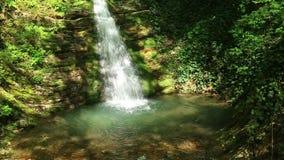 Cachoeira no parque Berendeyevo Tsarstvo, Sochi, Rússia video estoque