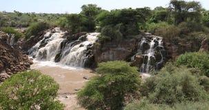 Cachoeira no parque nacional inundado filme