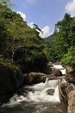 Cachoeira no parque nacional Khao Yai em Tailândia imagens de stock