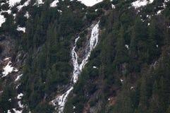 A cachoeira no Tatras alto, Zakopane pode dentro 2017, Polônia imagens de stock royalty free