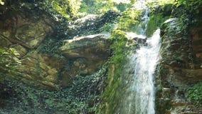 Cachoeira no volume de água puro da floresta entre rochas velhas video estoque
