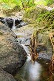 Cachoeira norte de Jedkod, Saraburi, Tailândia Fotografia de Stock