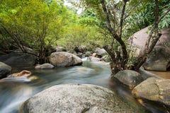 Cachoeira para baixo do monte Fotografia de Stock