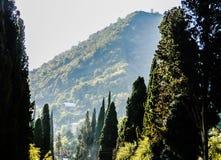 Cachoeira, parque, paisagem, natureza, ?gua, verdes foto de stock