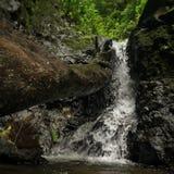 Cachoeira pequena Imagem de Stock Royalty Free