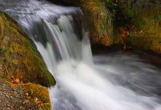 Cachoeira pequena Foto de Stock Royalty Free