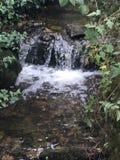 Cachoeira pequena bonita em Creswell foto de stock