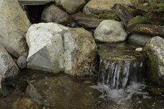 Cachoeira pequena da característica da água Imagem de Stock